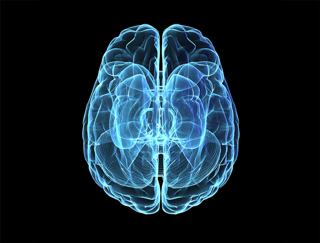 blue brain scan living with hearing loss cubex