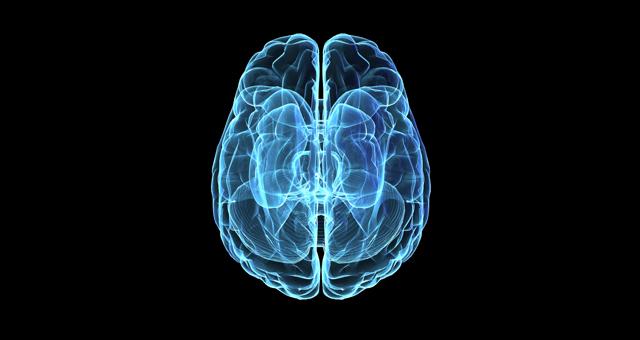 Cubex Pro Diagnostics Xray Brain